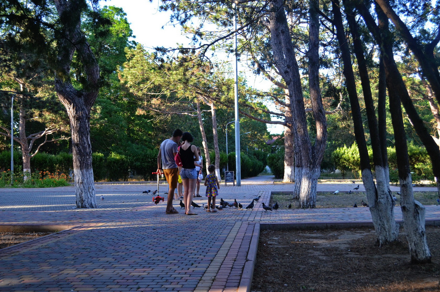kerch arshincevo 26 06 2020 park 20